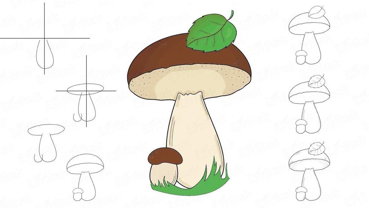 спортивных картинка как нарисовать гриб потерянного фотоаппарата