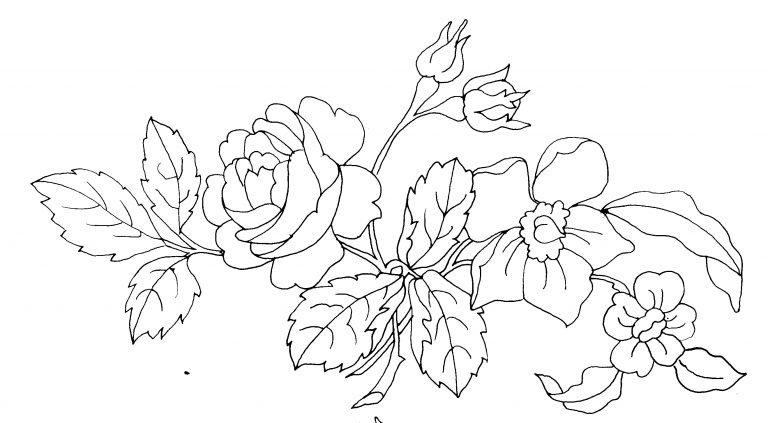 Dessin Fleur Noir Et Blanc Coloriages Store Card From User