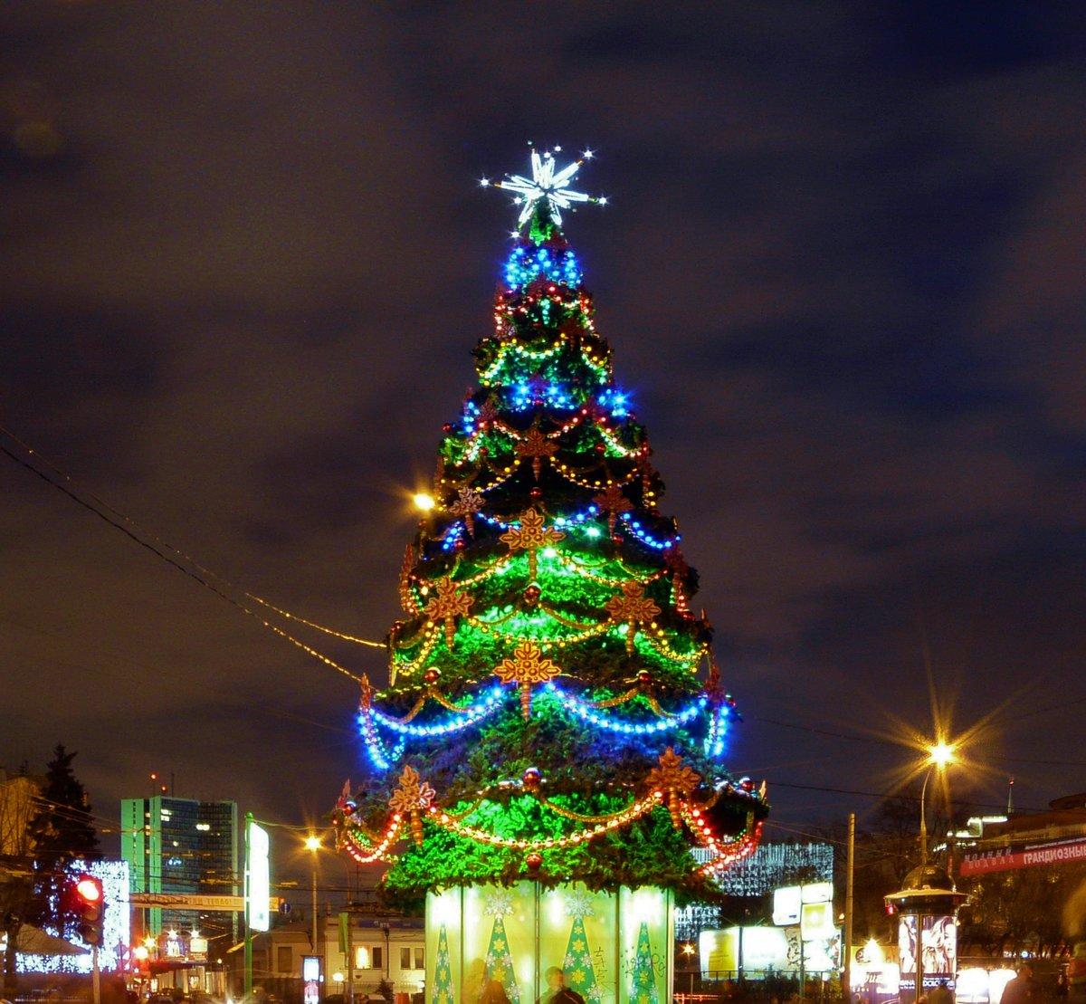 один фото елки новогодней по районам москвы выбираем шторы одном