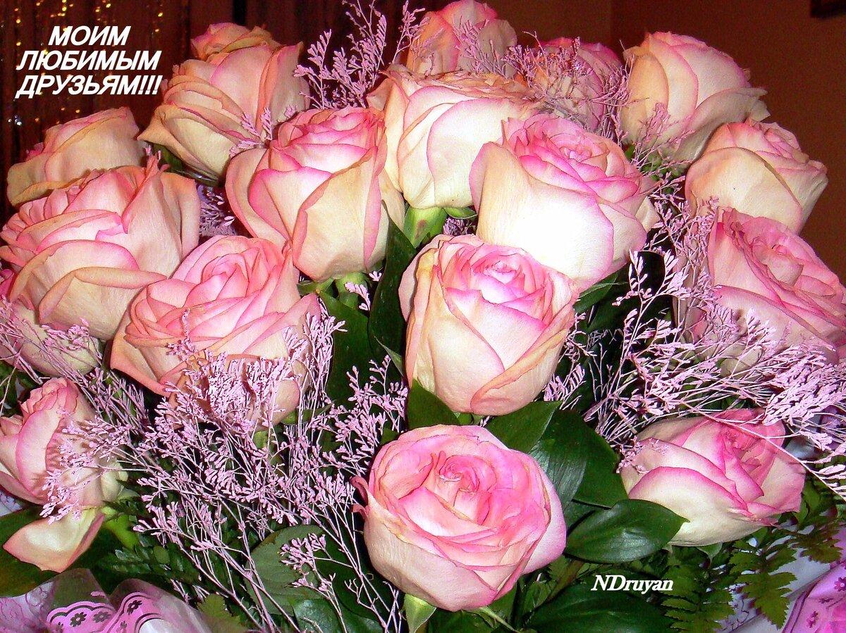 смотря то, букеты роз фото с пожеланиями понедельникам работаем утроенной