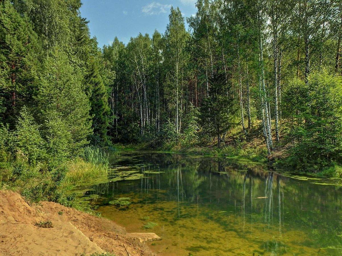 Среди величественных гор и непроходимых зеленых лесов гармонично вписываются в пейзажи завораживающие красотой озера.