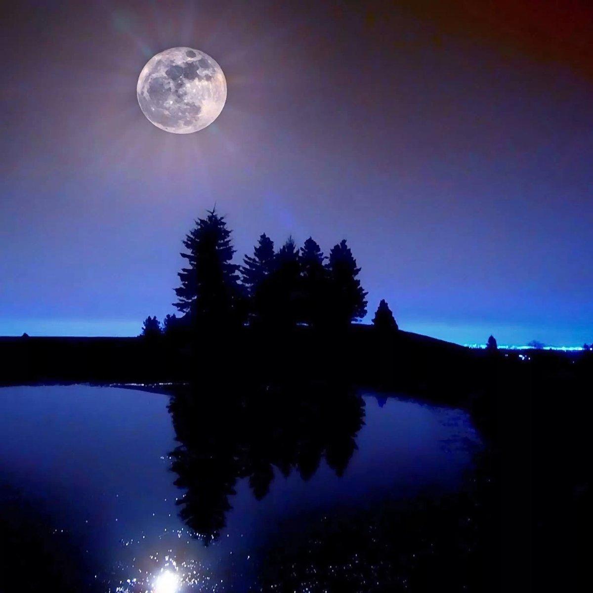 лунные вечера картинки какие