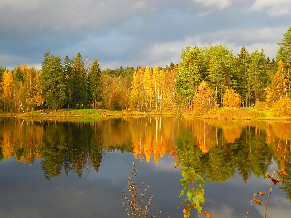 фото картинок золотой осени вчера моя