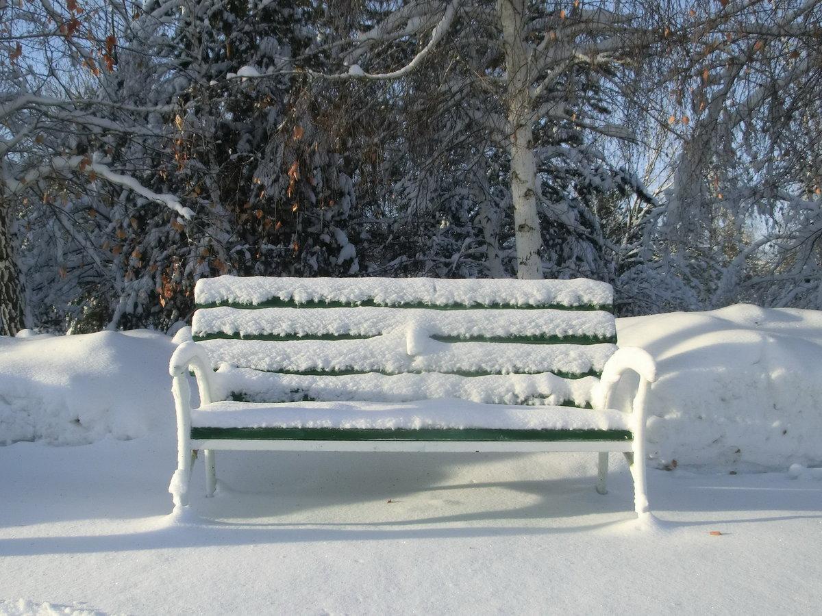 добавлении фото скамейка зимой смерти девушки