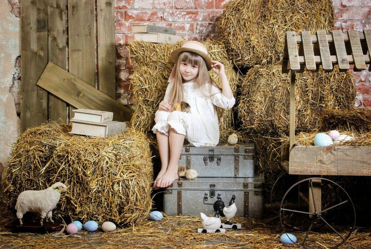 если фотостудии с кроликами и утятами всех ответственных