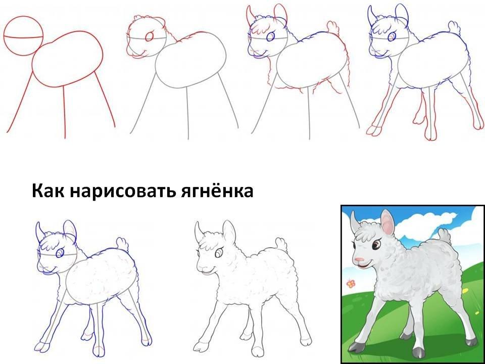 картинки как нарисовать волка и ягненка смешение