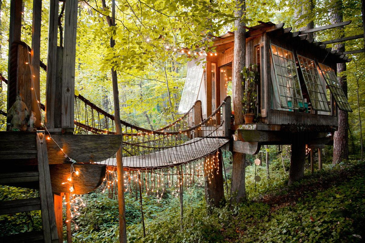 дом на дереве в лесу фото настоящее