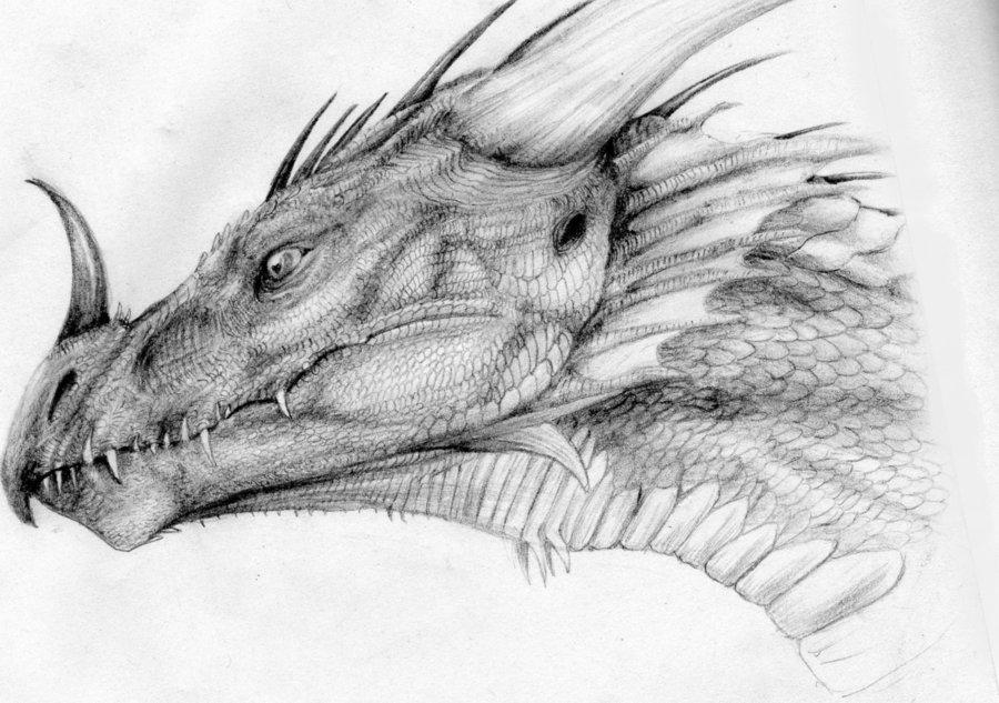 картинки драконы простым карандашом все еще смогли