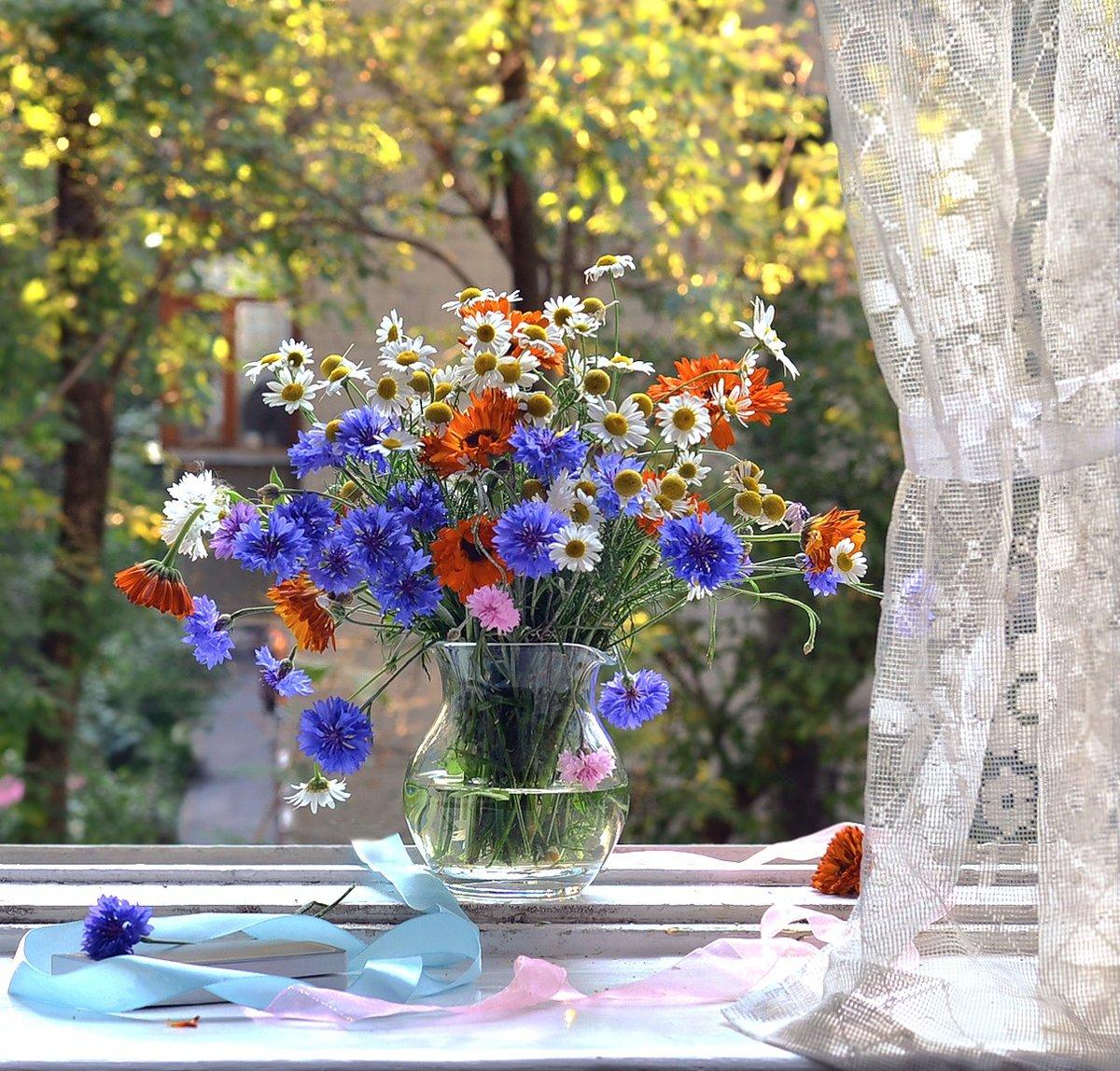 Летние окна #букет #васильки #вечер #дом #июль #композиция #конкурс #красота #ленты #лето #набоков #натюрморт #ноготки #окна #окно #природа #ракурс #ромашки #свет #солнце #стекло #стихи #цветы