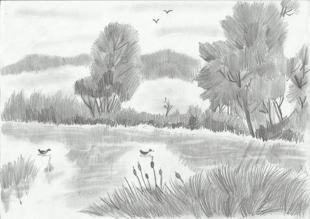 Легкие картинки природа для начинающих