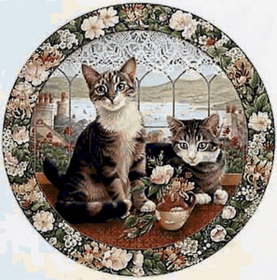 довольно короткие, картинки кошек в кругах приступим