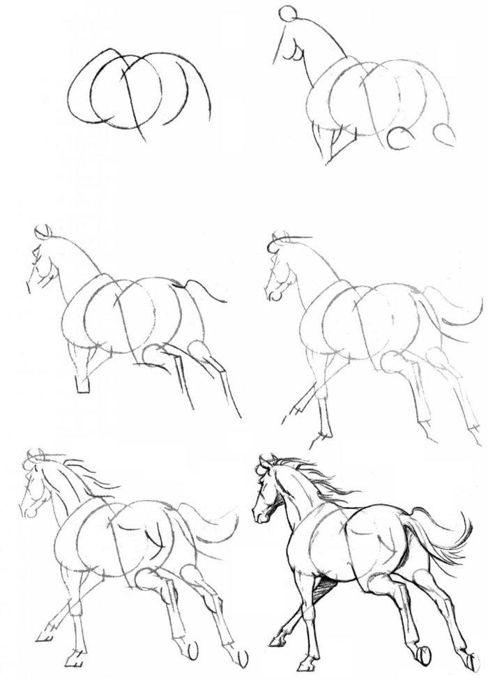 Картинки лошади карандашом для начинающих