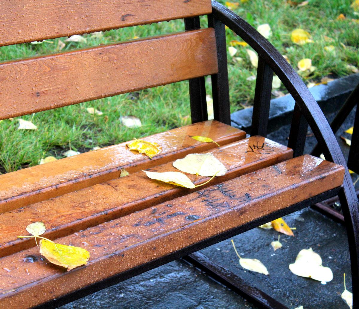 добавил, картинки скамейка и дождь член размаху
