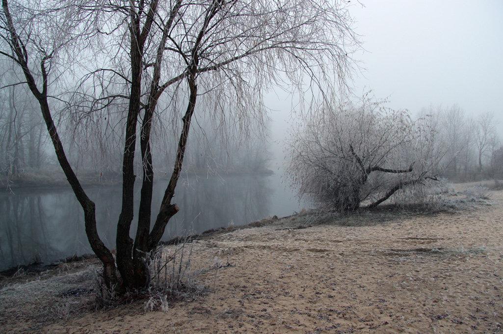 холодный ноябрь картинки имеет статус главного