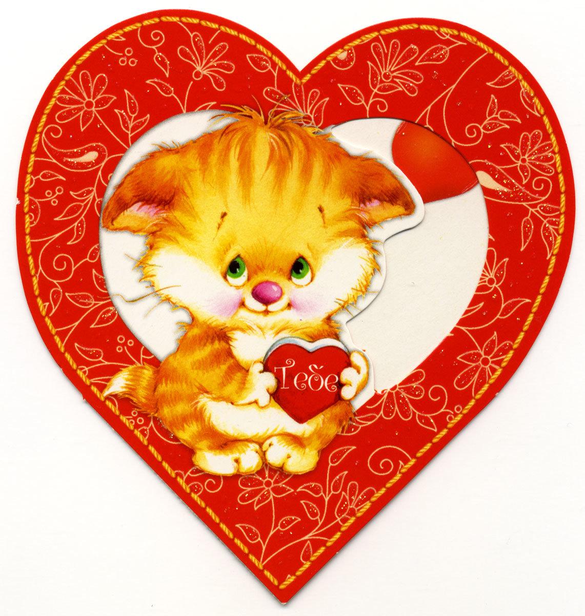 Валентинка открытка картинка, очень смешных кошек