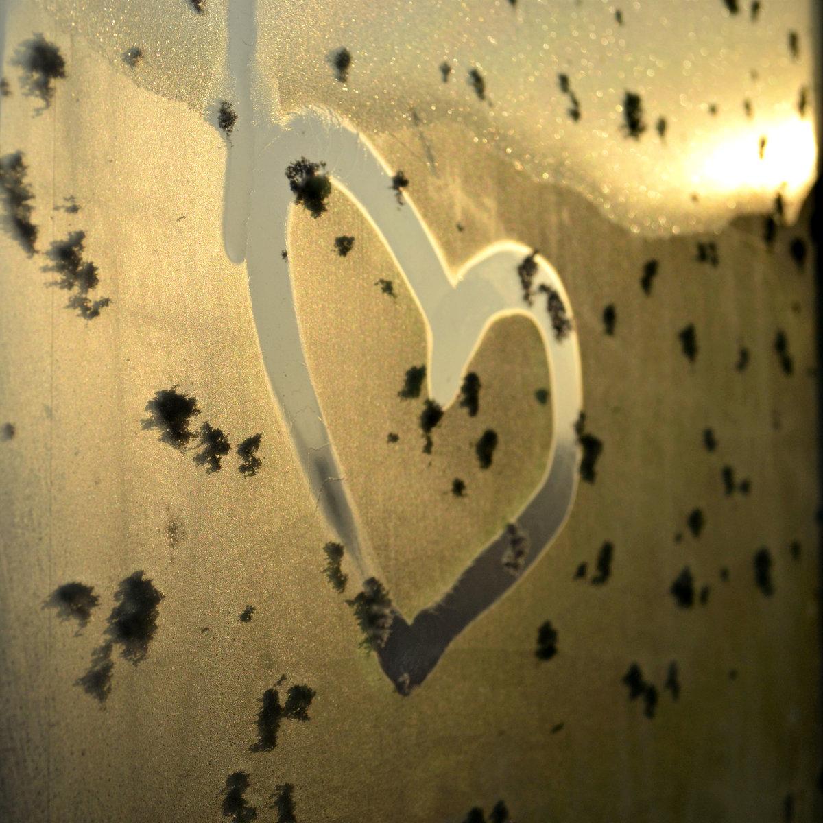 фотографии экс-солистки сердечко на стекле картинки замирает, оно продолжает