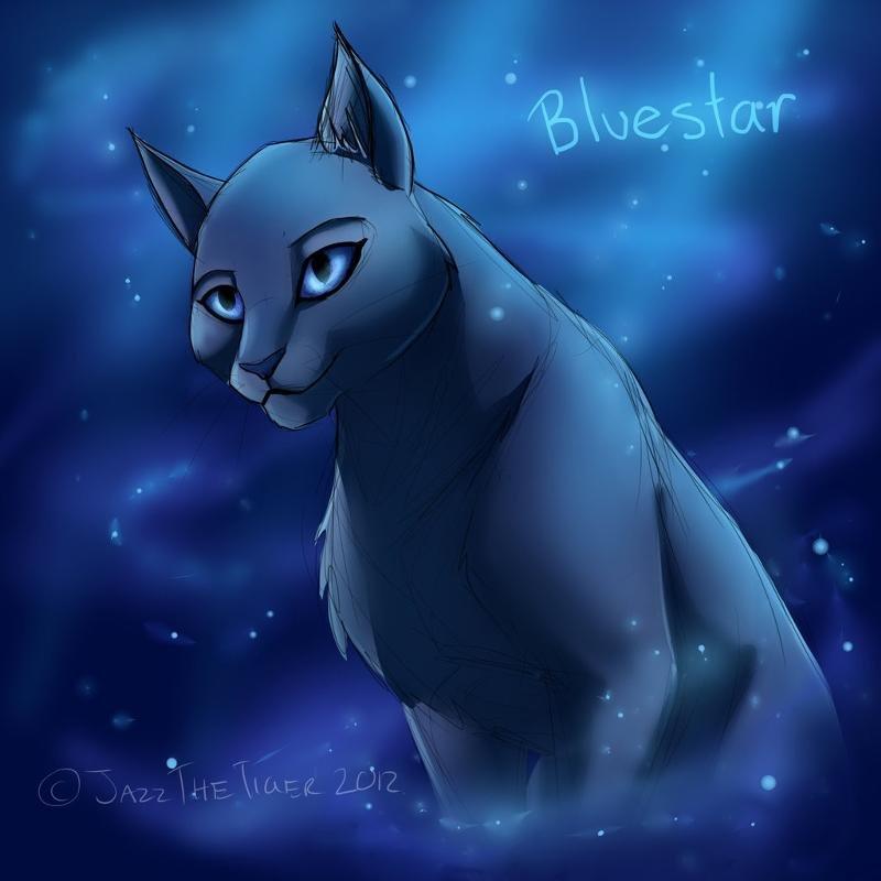 Смайлики рисунки, коты воители картинки синяя звезда