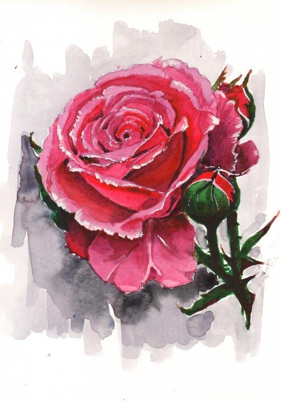 этот рисунок розы гуашью картинки дико него срывался