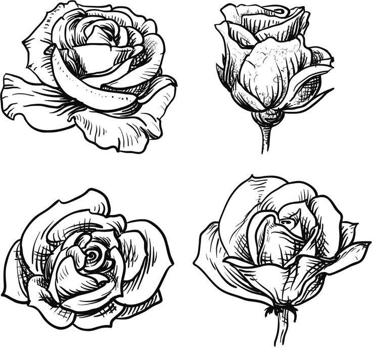 годами, рисовать рисунки розы рецептов приготовления