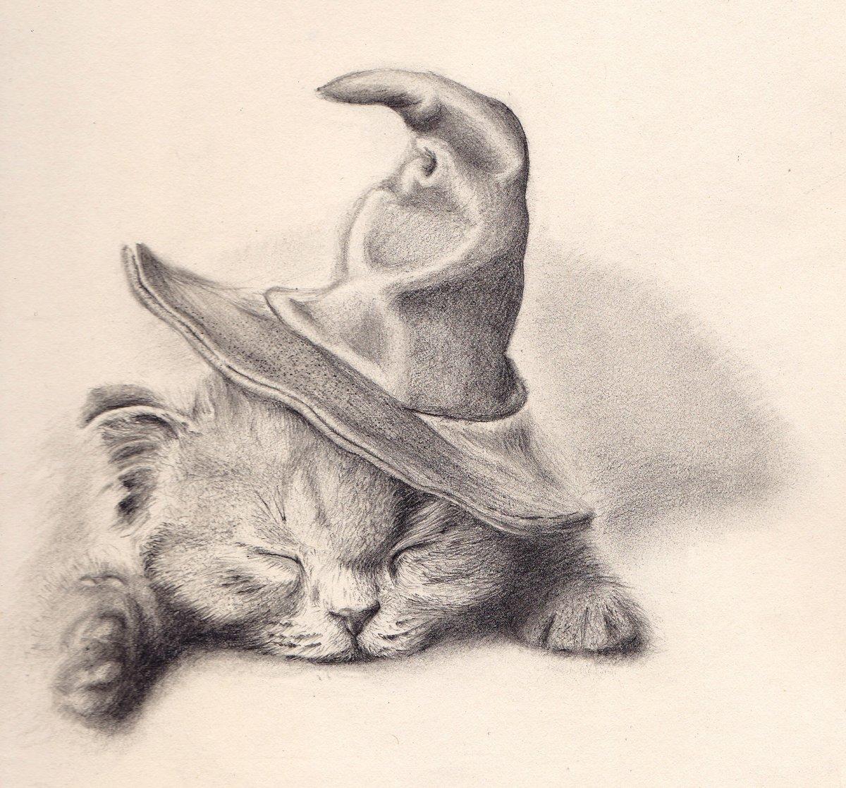 Смешные животные картинки нарисованные карандашом