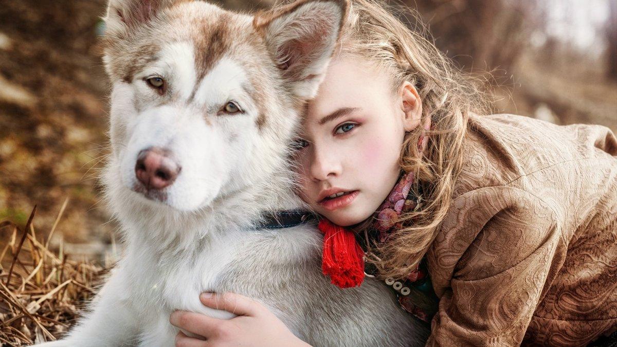 Картинки девочки и собаки