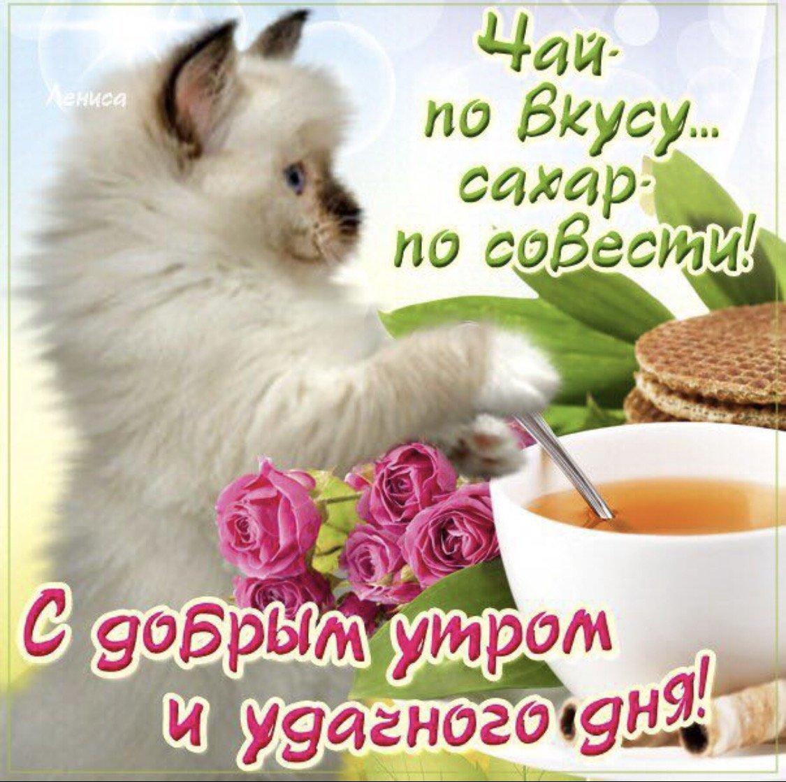 Пожелания с добрым утром друзьям прикольные в картинках