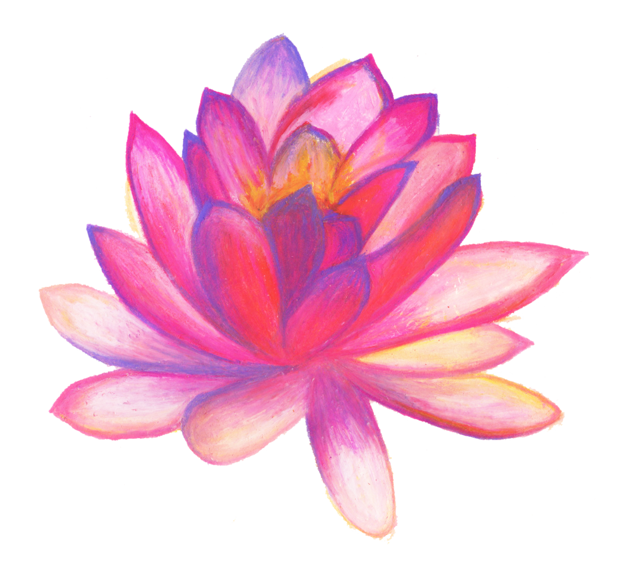 Картинка цветы нарисованная