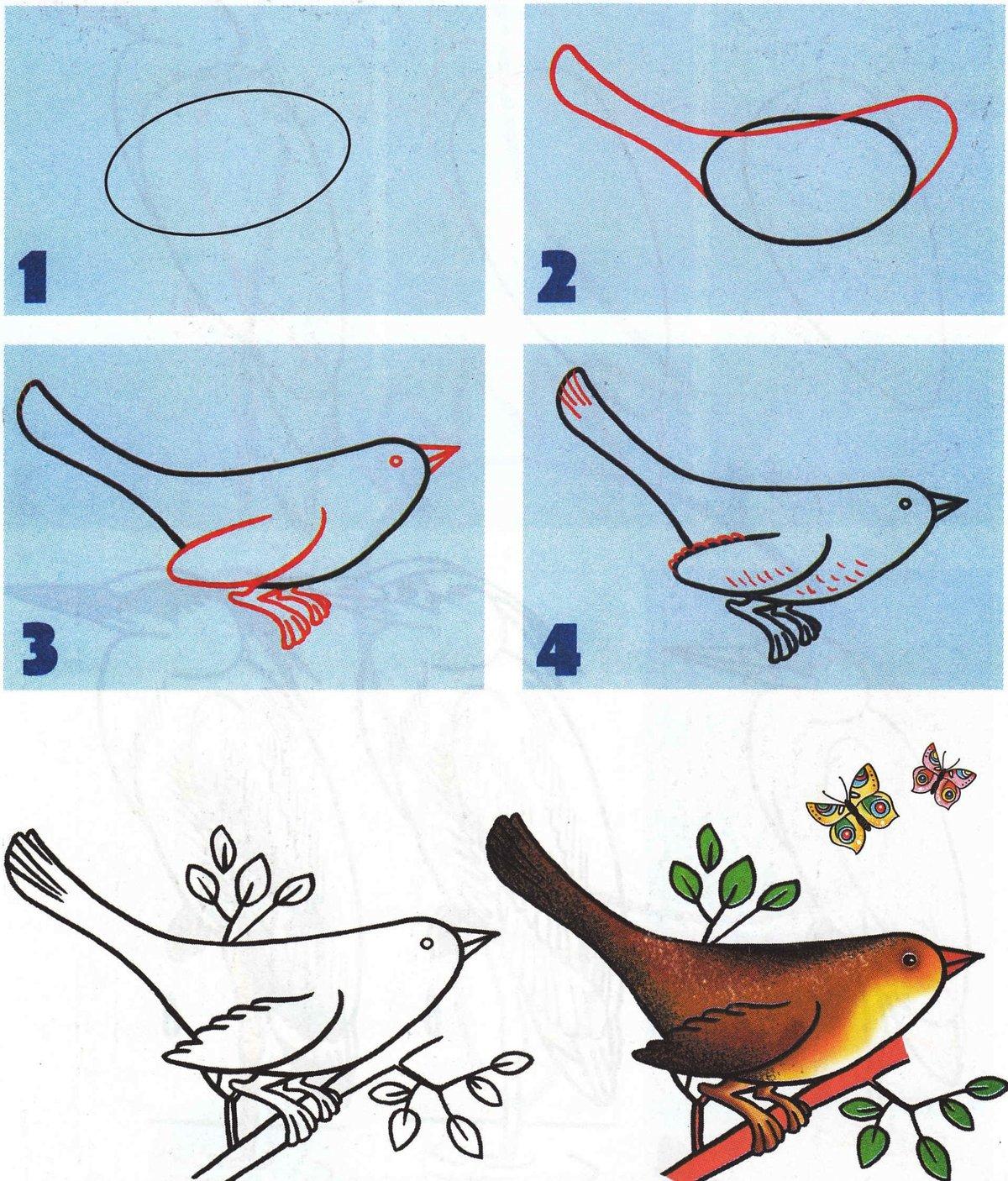 рисунок птицы поэтапно наглядно типовые