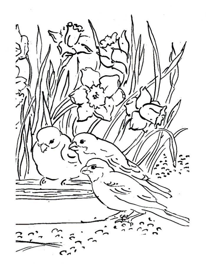Весна в картинках раскраска распечатать