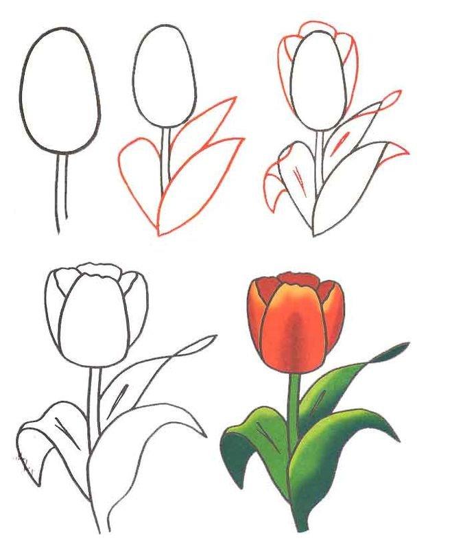 Как нарисовать на открытки цветок, открытка