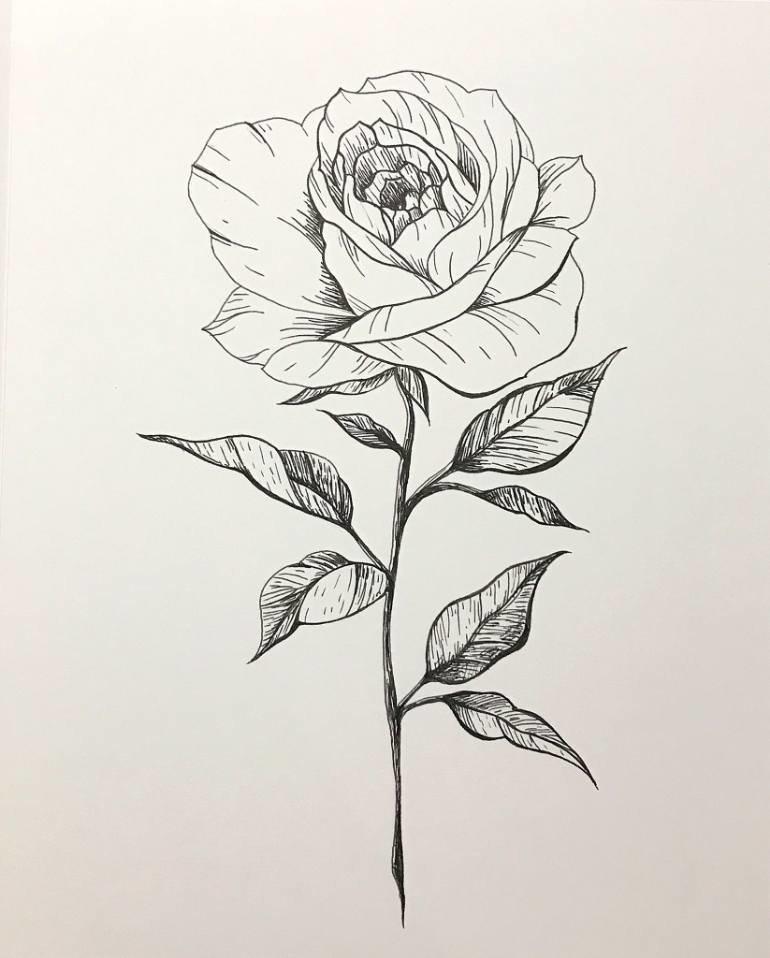 Днем, нарисованные розы картинки
