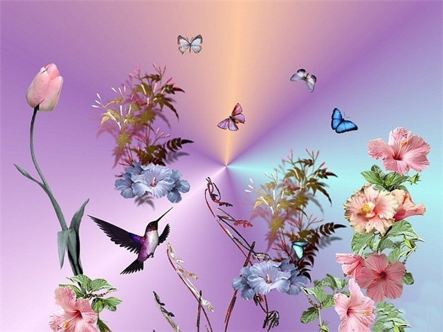 Открытки с бабочками с добрым утром