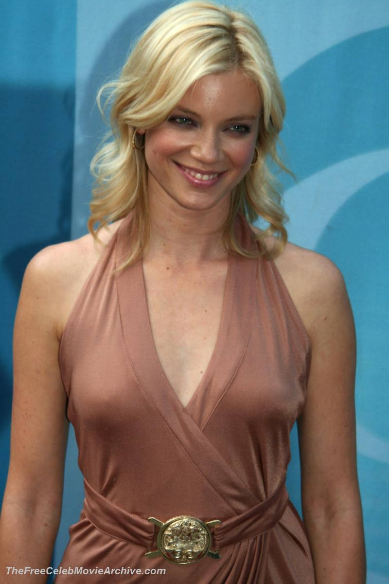 Amy Smart nudes (41 photos), Sexy, Cleavage, Twitter, bra 2017