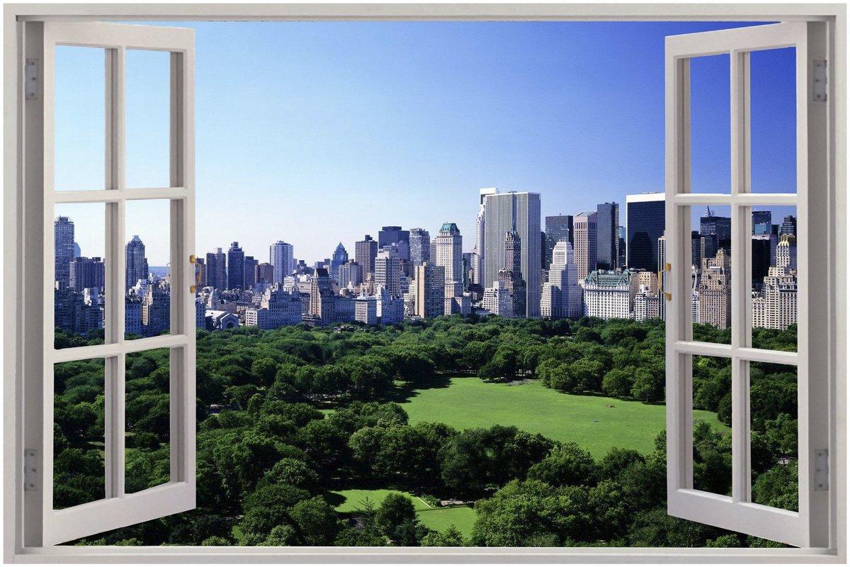 Картинка вид в окно