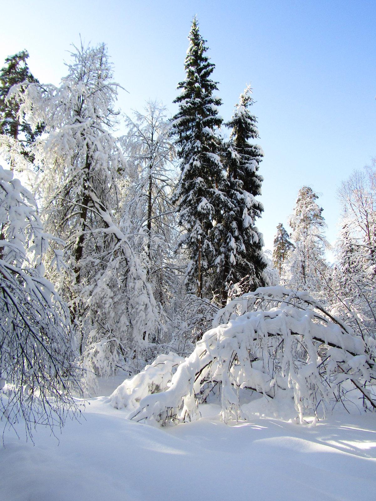 Фото зимнего кенигсберга привет