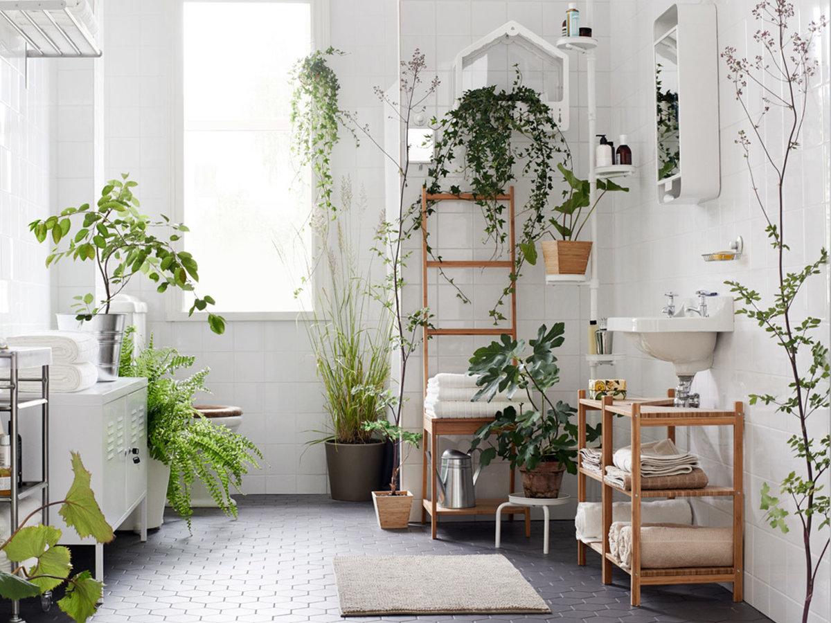 inside plants decoration - HD1068×812