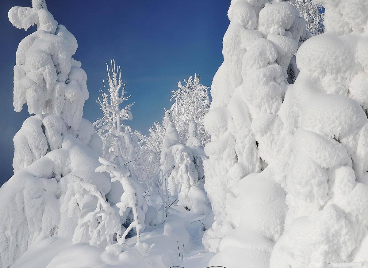 Картинки снег в россии