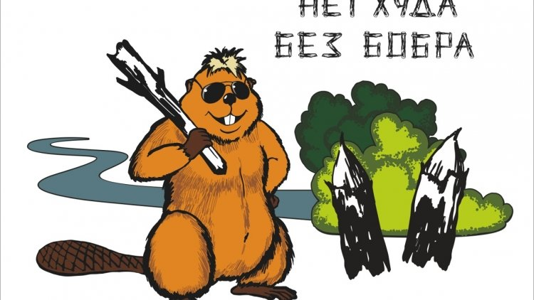 Единая россия, картинки смешные с бобрами