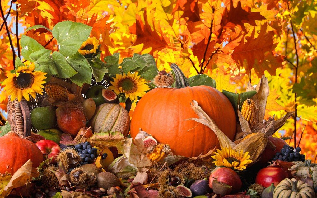 Годика мальчику, красивые картинки для детей осень