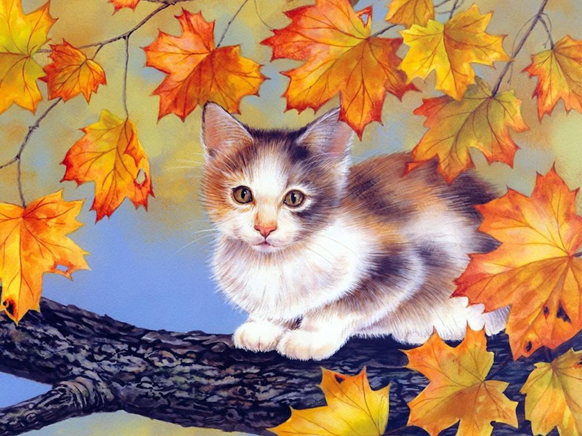 Рисунки котами, нарисовать осенние картинки