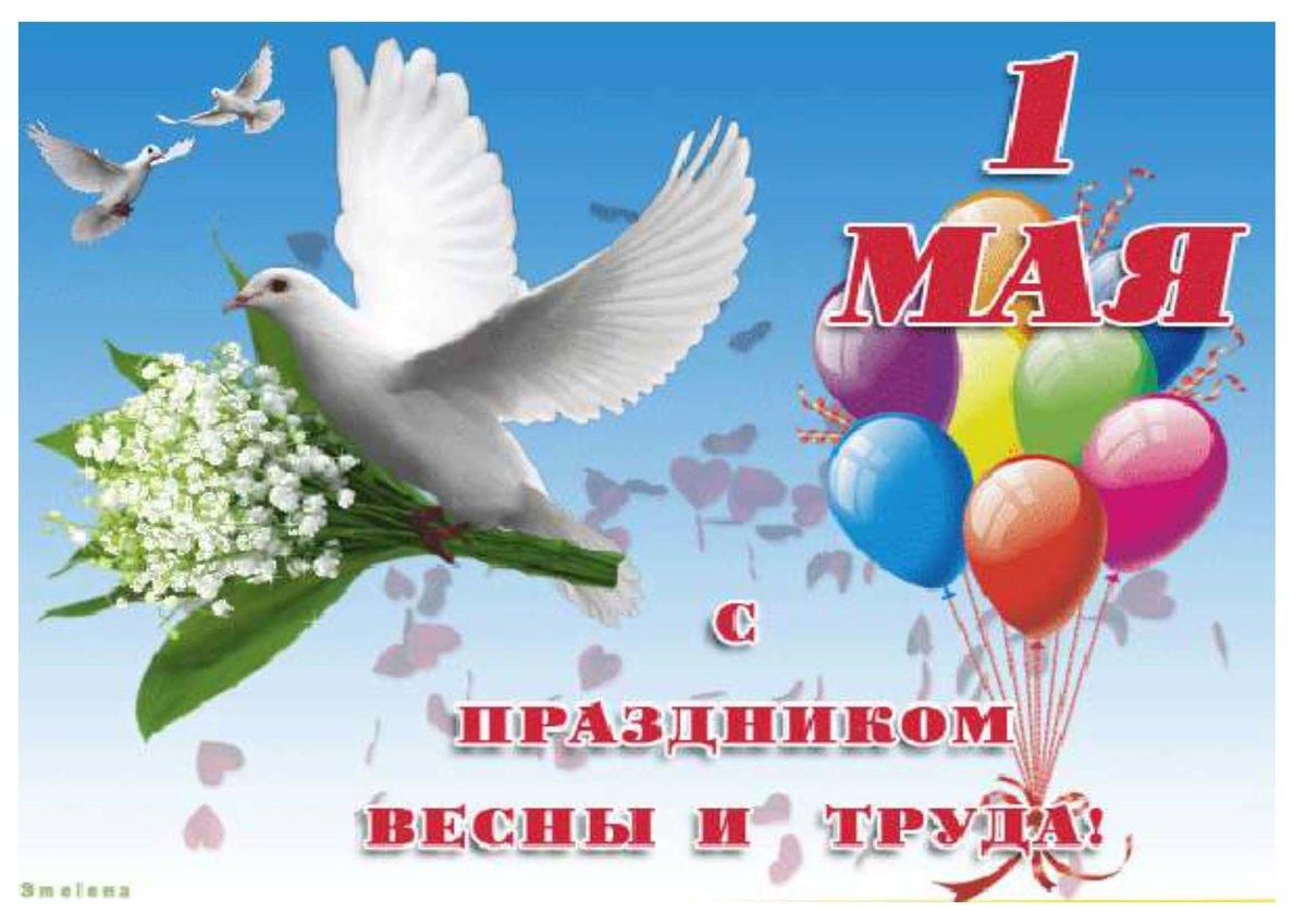 Картинки к 1 мая, белые лебеди