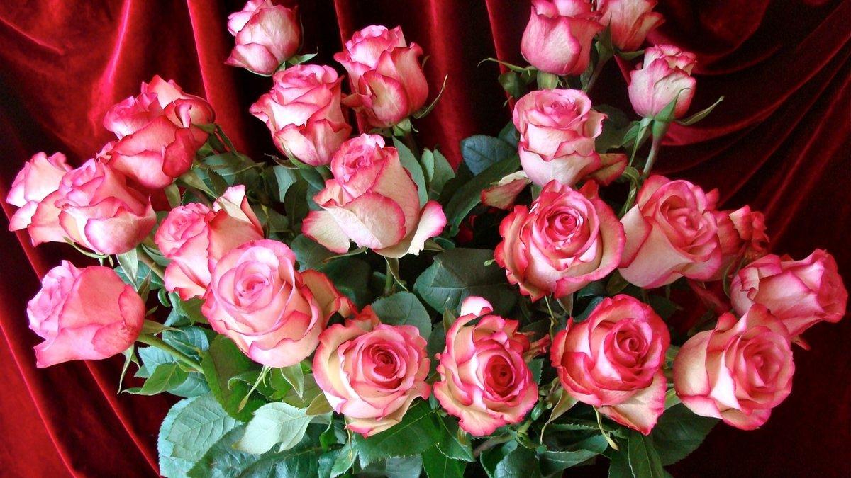 Картинки, открытка розы другу в контакте