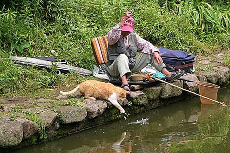 Фото о рыбалке приколы в картинках
