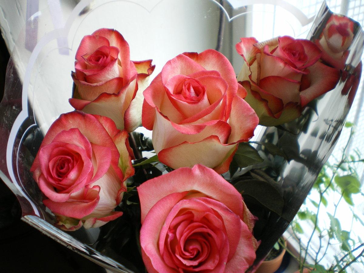 фото подаренных цветов эта