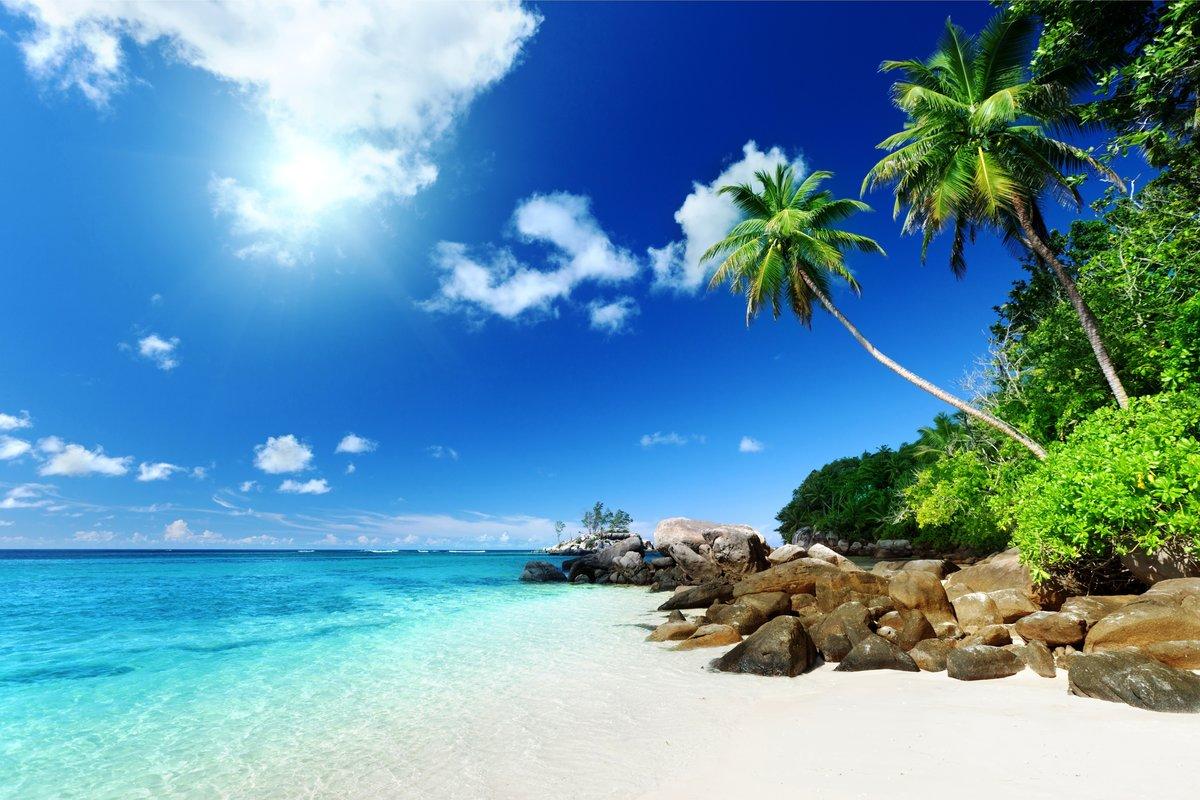 Картинки пальмы море солнце, для самой лучшей