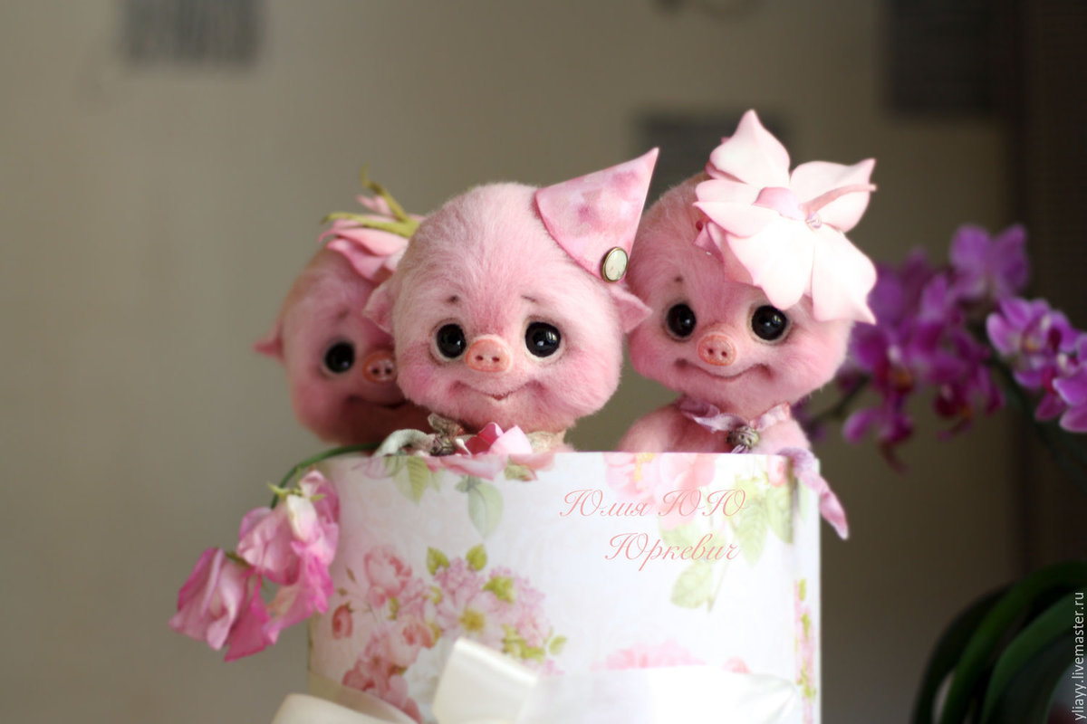 Коллекция авторских работ Свиньи, свинки, хрюшки:-))) - АVP