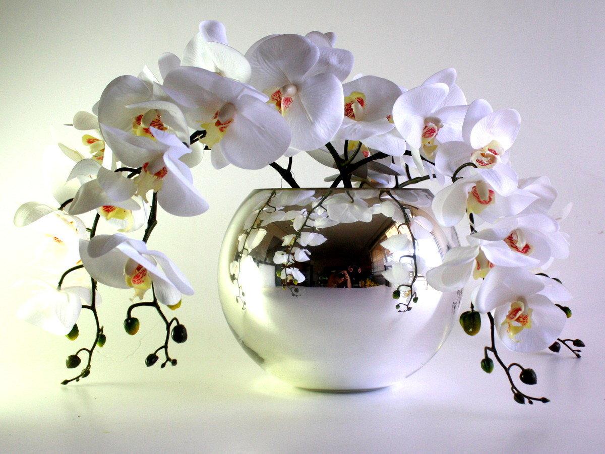может, становится поздравительная открытка с орхидеями этому каждый пользователь