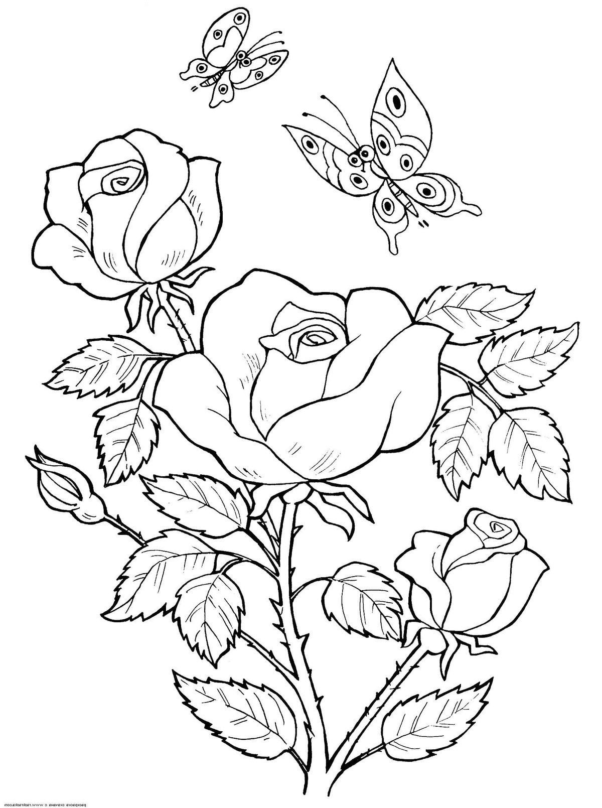 Днем, картинки на формат а4 розы