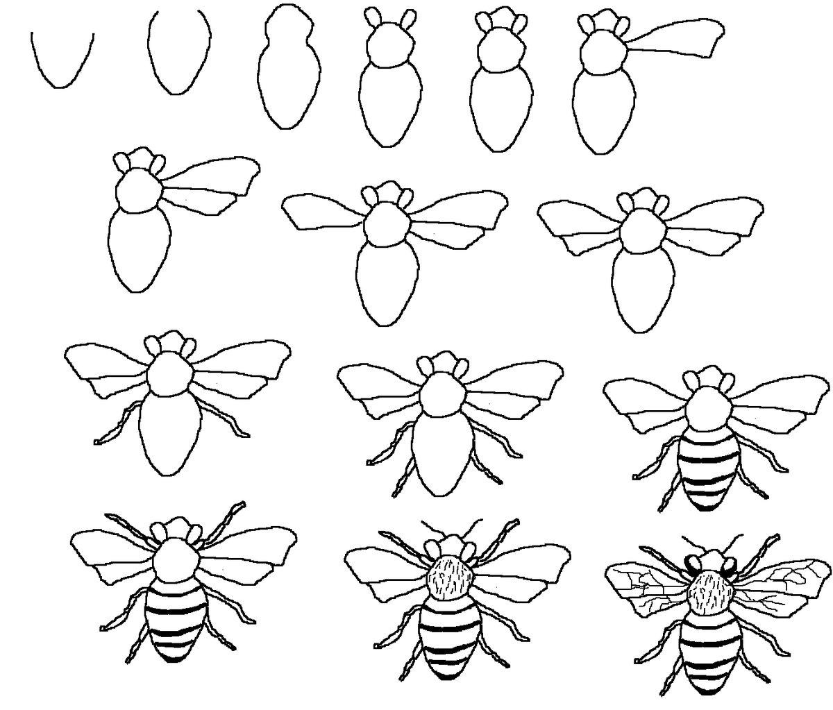 картинки схематических рисунков