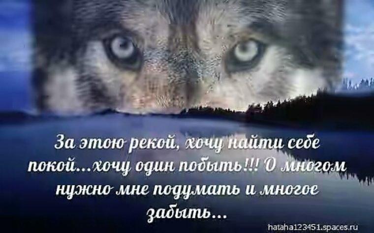 Картинки с волками и надписями про жизнь со смыслом новые зимой